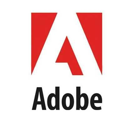 Adobe Professional Support - 24 Ay